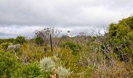 för bildfyr för täthet hög storm för område Royaltyfri Fotografi