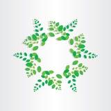 För bladcirkel för vår grön bakgrund Royaltyfria Bilder