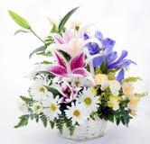 för blommabild för bukett ljus vektor Royaltyfria Bilder