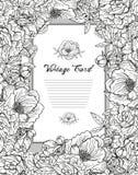 för blommairis för svart kort kulör blom- white Royaltyfri Fotografi
