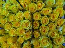 för blommamarknad för buketter olik gata Grupper av buketter av till salu gula rosor royaltyfria foton