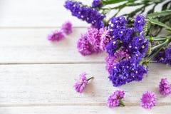 F?r blommapr?stkrage f?r ny v?r purpurf?rgad v?xt och f?r sammans?ttning f?r staticeblommaram p? vit tr?bakgrund arkivfoton