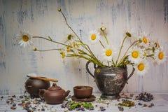 För blommatappning för tusensköna blommande metall för vas Arkivfoto