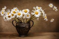 För blommatappning för tusensköna blommande metall för vas Royaltyfri Fotografi