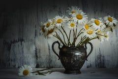 För blommatappning för tusensköna blommande metall för vas Arkivbilder