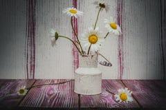 För blommatappning för tusensköna blommande metall för vas Fotografering för Bildbyråer