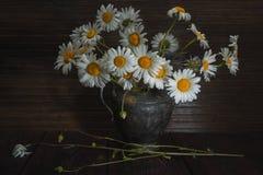 För blommatappning för tusensköna blommande metall för vas Royaltyfria Bilder