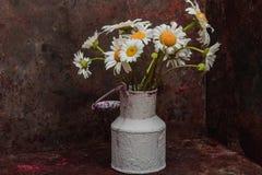 För blommatappning för tusensköna blommande metall för vas Royaltyfria Foton