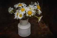För blommatappning för tusensköna blommande metall för vas Arkivbild