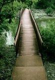 för bro trän ut Fotografering för Bildbyråer