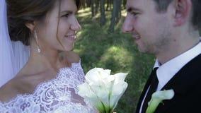 För brud` s för brudgum hållande händer med förälskelse lager videofilmer