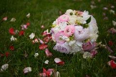 för brudbrudgum för bukett brud- händer Härlig brud- bukett från röda rosor på gräs utomhus Royaltyfri Bild