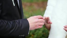 För brudgum- och brudutbyte för två vita personer vigselringar arkivfilmer