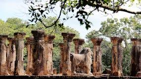 För buddhismtempel för pelare historiskt träd för bodhi royaltyfri bild