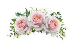 För bukettvektor för blomma rosa krans för design Persika rosa rosor, euc royaltyfri illustrationer