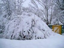 För bygdlandcsape för vinter snöig sikt Fotografering för Bildbyråer