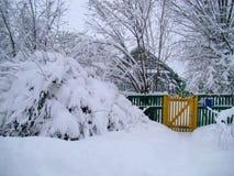 För bygdlandcsape för vinter snöig sikt Royaltyfri Fotografi