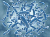 för cellillustration för bakterier blå vetenskap Arkivbild