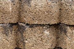 För cementmurbruk för bakgrund grov gammal vägg Arkivfoton