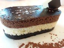För chokladmousse för trefaldigt lager dekadent kaka Royaltyfri Fotografi