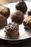 För chokladtryffel för gourmet utsmyckad mörk godis Royaltyfria Bilder