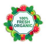 För cirkelkopia för frukt färgrikt utrymme med ny organisk over vit modellbakgrund stock illustrationer