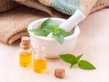 För citronbasilika för alternativ medicin ingredienser fo för brunnsorter för olja naturliga arkivbilder
