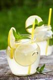 för citrus vatten för sommar drinkis för karaff orange fotografering för bildbyråer