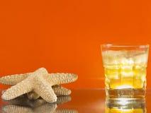 för citrus vatten för sommar drinkis för karaff orange Arkivfoton