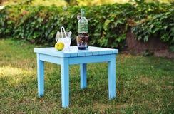 för citrus vatten för sommar drinkis för karaff orange Royaltyfria Bilder