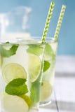 för citrus vatten för sommar drinkis för karaff orange Nya Mojito med limefrukt och mintkaramellen background card congratulation Royaltyfri Bild