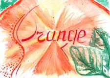 För citrusfruktblad för vattenfärg orange bakgrund för bokstäver Royaltyfri Fotografi