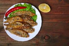 För Closeup av en platta med spanska ansjovisar för fritos för boquerones som slog och stekt, är typiska i Spanien, på en lantlig Royaltyfria Bilder