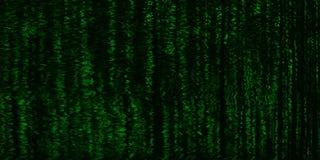 För cyberpunken hacker för horisontallivlig matris neo tv för terminal royaltyfri foto