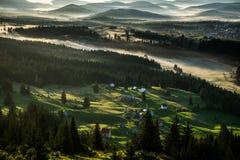 by för dal för livstidsliljamorgon fortfarande Royaltyfria Bilder