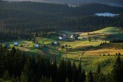 by för dal för livstidsliljamorgon fortfarande Royaltyfria Foton