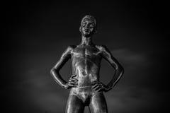 för den cluj för den centrala staden parken romania för napocaen mannen placerade statyn Royaltyfri Fotografi