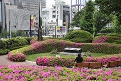 för den japan för byggnader för lägenhetarkitekturbyggnad towers det konkreta glass höga tokyo för stål moderna bostadsstigningen Royaltyfri Fotografi