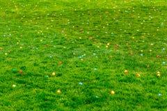 för det easter för bakgrundspojken isolerade den gullig jakten för gräs för ägg ägget ny dolde green sökande av white Royaltyfri Fotografi