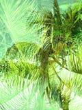 För djungelabstrakt begrepp för dubbel exponering tropisk bakgrund Arkivbilder