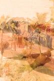 För djungelabstrakt begrepp för dubbel exponering tropisk bakgrund Arkivfoto