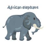 För djura t-skjortor Arkivfoto