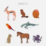 För djurvektor för tecknad film gullig uppsättning Hand-dragen stil Antilop bäver, apa, papegoja, vaquita, gophe Royaltyfri Fotografi