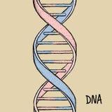för dna-guld för bakgrund 3d isolerad white illustration DNAsymbol Dna-spiralsymbol Gene Icon Royaltyfri Fotografi