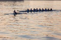 För Eights för regattaroddskallar hamn morgon Arkivbilder