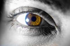 för eos-öga för kamera 20d skytte för makro mänskligt royaltyfri foto
