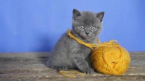för eps-kattunge för 8 boll tråd arkivfilmer