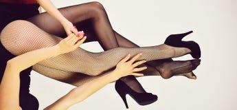 för förälskelsebaddräkter för par lesbiskt slitage ben av sexiga kvinnor i trendig strumpbyxor och skor Royaltyfri Foto