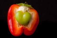 För förälskelsen av peppar Fotografering för Bildbyråer