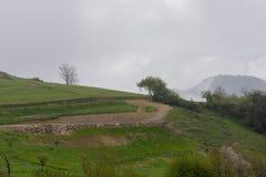För förser med rutor i Asturias Arkivfoton
